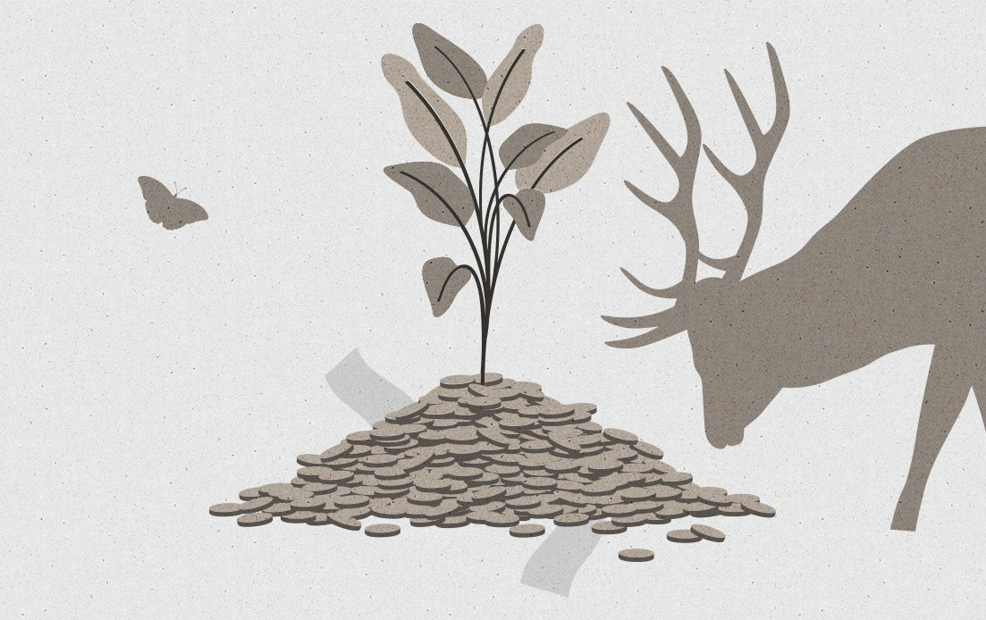 Image for Sustainable Money Saving Tips blog post. An illustration of a plant growing out of a pile of coins with and surrounded by wildlife.